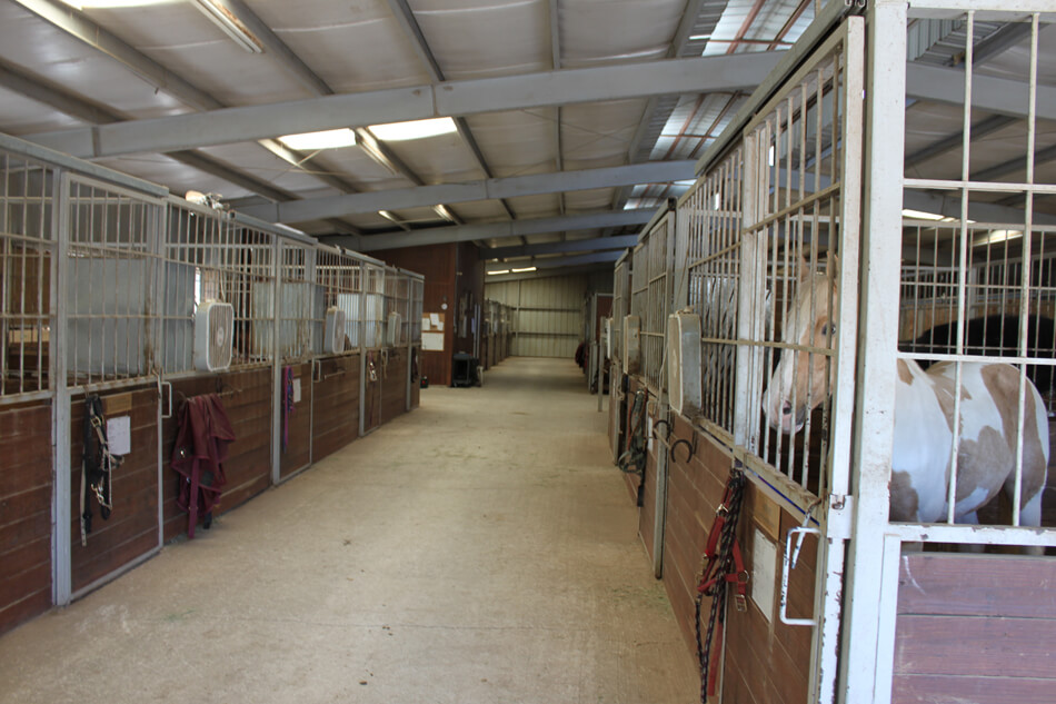 Stables Inside